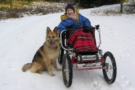 Boma 7 Wheelchair